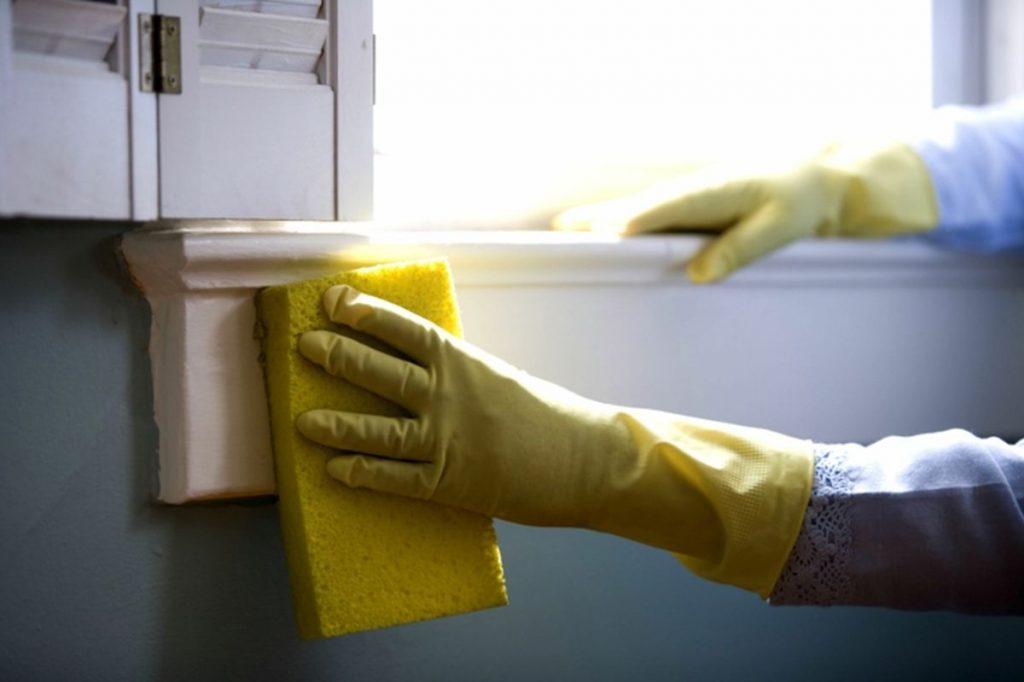 Fenster putzen