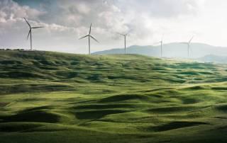 Umweltbewusstsein in Unternehmen