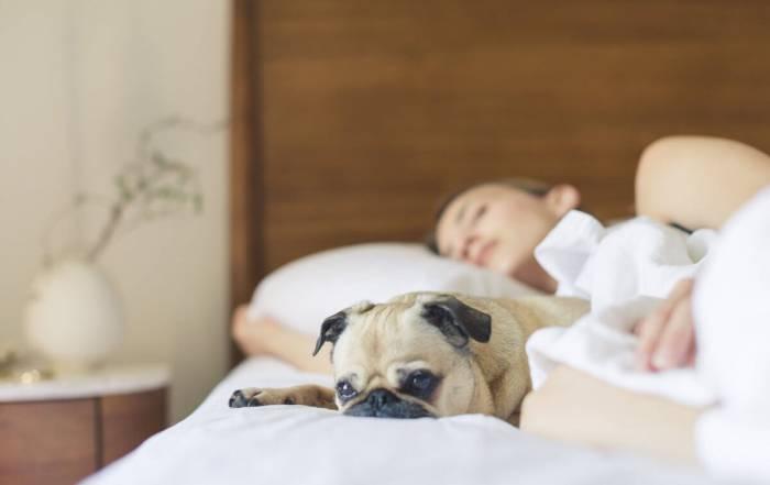 Tipps zum Einschlafen