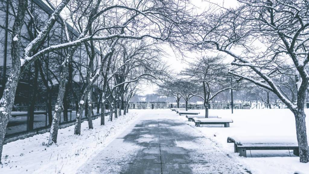 Winterdienst Lüdinghausen